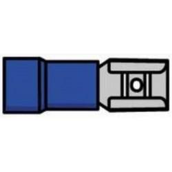 Terminal fêmea isolado azul - 011-0386