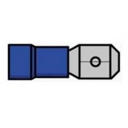 Terminal macho isolado azul - 011-0395